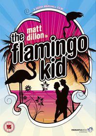 The Flamingo Kid - (Import DVD)