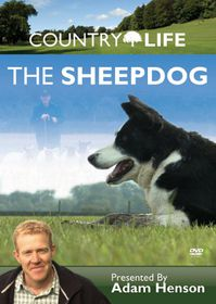 Country Life: The Sheepdog - (Import DVD)
