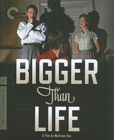 Bigger Than Life - (Region A Import Blu-ray Disc)
