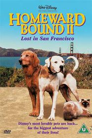 Homeward Bound 2 - (Import DVD)