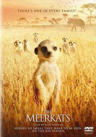 The Meerkats (DVD)