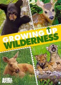Growing up Wilderness - (Region 1 Import DVD)