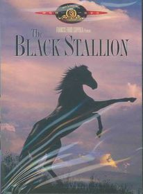 Black Stallion - (Region 1 Import DVD)