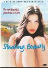 Stealing Beauty (1996) (DVD)