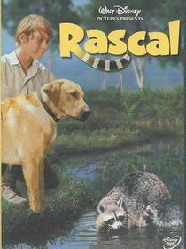 Rascal - (Region 1 Import DVD)
