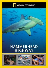 National Geographic: Hammerhead Highway - (Import DVD)