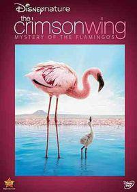 Disneynature:Crimson Wing the Mystery - (Region 1 Import DVD)