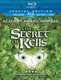 Secret of Kells - (Region A Import Blu-ray Disc)