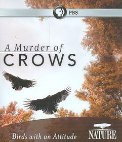 Nature:Murder of Crows - (Region A Import Blu-ray Disc)