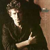 Don Henley - Building The Perfect Beast (CD)