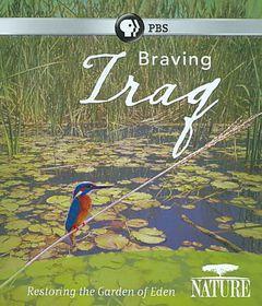 Nature:Braving Iraq - (Region A Import Blu-ray Disc)