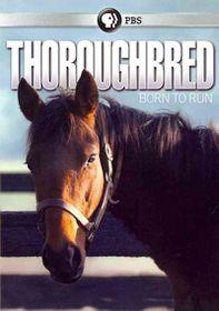 Thoroughbread:Born to Run - (Region 1 Import DVD)