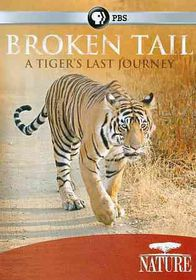Nature:Broken Tail Tiger?S Last Journ - (Region 1 Import DVD)