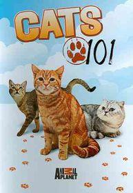 Cats 101 - (Region 1 Import DVD)