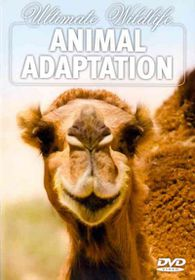 Ultimate Wildlife:Animal Adaptation - (Region 1 Import DVD)