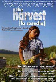 Harvest (La Cosecha) - (Region 1 Import DVD)