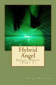 Hybrid Angel