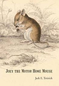 Joey the Motor Home Mouse