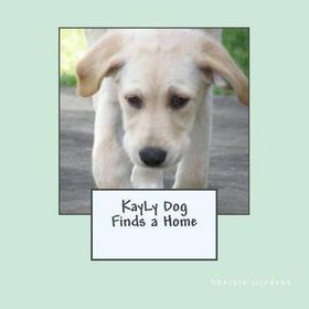 Kayly Dog Finds a Home