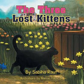 The Three Lost Kittens