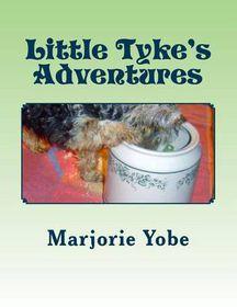 Little Tyke's Adventures
