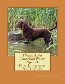 I Want a Pet American Water Spaniel