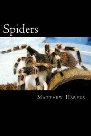 Spiders: A Fascinating Book Containing Spider Facts, Trivia, Images & Memory Recall Quiz