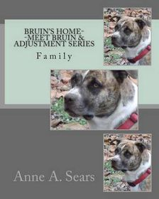 Bruin's Home--Meet Bruin and Adjustment Series
