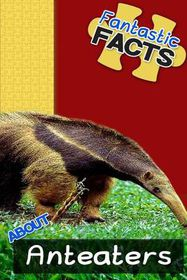 Fantastic Facts about Anteaters