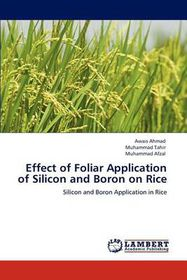 Effect of Foliar Application of Silicon and Boron on Rice