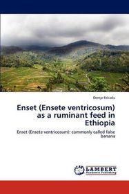 Enset (Ensete Ventricosum) as a Ruminant Feed in Ethiopia