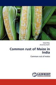 Common Rust of Maize in India