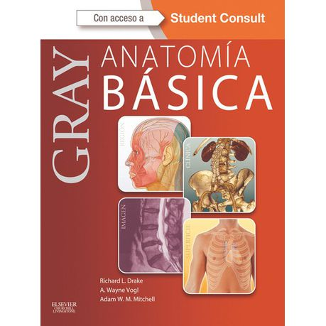 De ebook anatomia gray